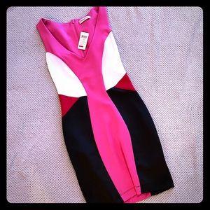 NWT Arden b mini cocktail dress xs pink black